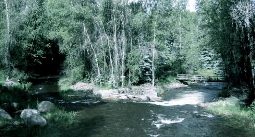 streams meet